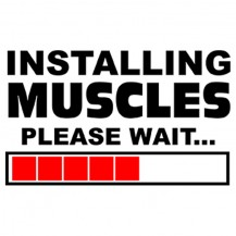 Instaling Muscles