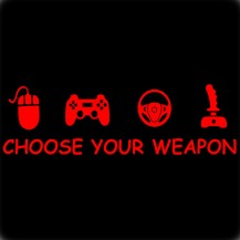Choose Your Weapon Gamer