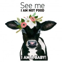 I m Not food