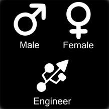 Engineer Gender