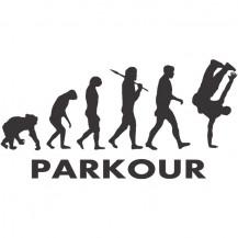 Parkour Evolution